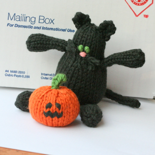 black cat adn pumpkin