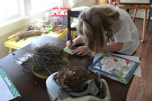 Nest Study - she's making a materials list.