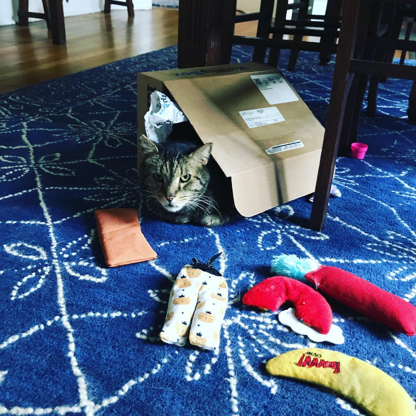 KitNip Box Fort